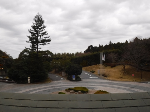 View out from the Narita Hilton